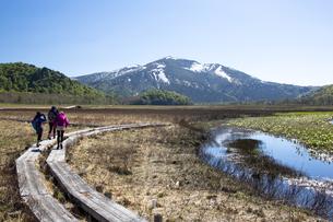 初夏の尾瀬ヶ原と至仏山の写真素材 [FYI04317822]