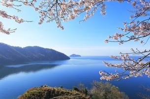 桜咲く奥琵琶湖パークウェイより葛籠尾崎と竹生島を望むの写真素材 [FYI04317898]