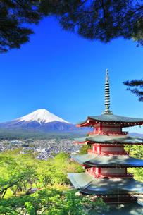 新倉山浅間公園より五重塔に新緑と雪の富士山の写真素材 [FYI04317934]