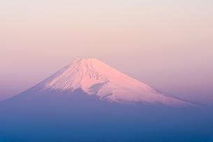 静岡県 伊豆市より夜明けの紅富士の写真素材 [FYI04318154]