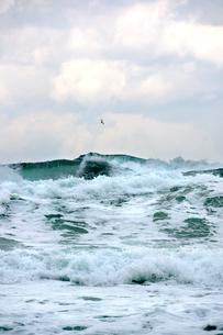 日本海怒涛の荒海の写真素材 [FYI04318226]