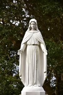 大野教会マリア像の写真素材 [FYI04318234]