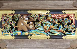 日光東照宮 猿の彫刻の写真素材 [FYI04318468]