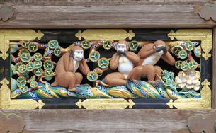 日光東照宮 猿の彫刻の写真素材 [FYI04318470]
