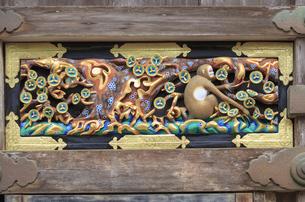 日光東照宮 猿の彫刻の写真素材 [FYI04318471]