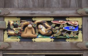 日光東照宮 猿の彫刻の写真素材 [FYI04318472]