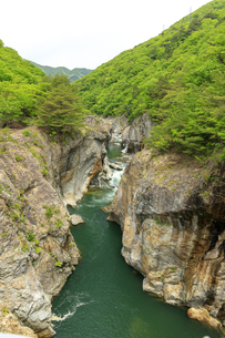 新緑の龍王峡の写真素材 [FYI04318488]