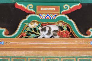 日光東照宮 眠り猫の写真素材 [FYI04318515]