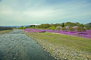 春景の写真素材 [FYI04318594]