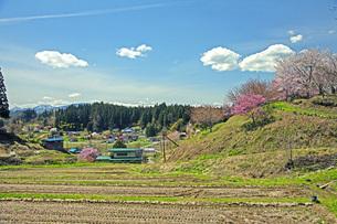 春景の写真素材 [FYI04318638]