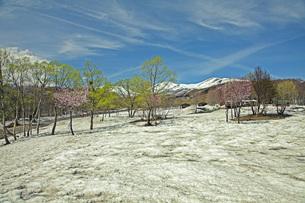 残雪の月山の写真素材 [FYI04318655]