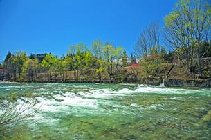 新緑の寒河江川の写真素材 [FYI04318678]