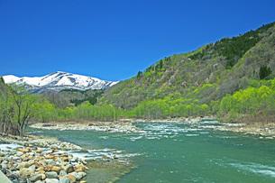 新緑の寒河江川の写真素材 [FYI04318680]