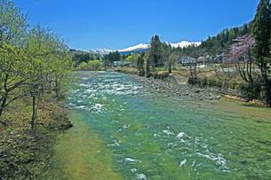 新緑の寒河江川の写真素材 [FYI04318681]