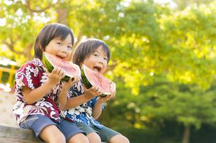 スイカを食べる双子の兄弟の写真素材 [FYI04318751]