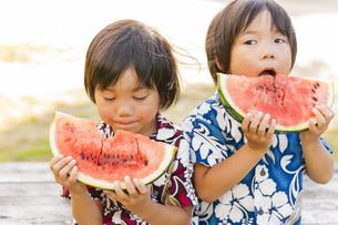 スイカを食べる双子の兄弟の写真素材 [FYI04318752]