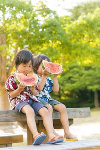 スイカを食べる双子の兄弟の写真素材 [FYI04318755]