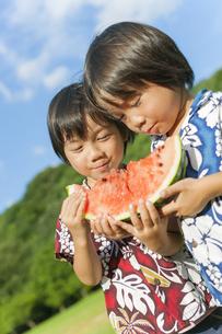スイカを食べる双子の兄弟の写真素材 [FYI04318759]