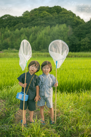 虫取り網を持った双子の兄弟の写真素材 [FYI04318765]