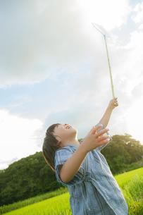 虫取りをする日本人の男の子の写真素材 [FYI04318773]