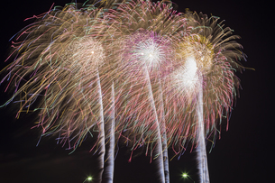 未来へ残したい日本の花火の写真素材 [FYI04318797]