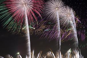 未来へ残したい日本の花火の写真素材 [FYI04318800]