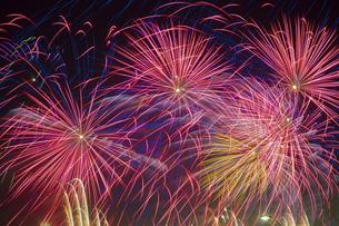 未来へ残したい日本の花火の写真素材 [FYI04318802]