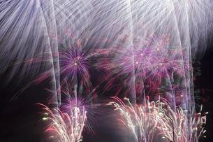 未来へ残したい日本の花火の写真素材 [FYI04318804]