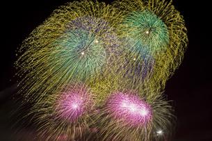 未来へ残したい日本の花火の写真素材 [FYI04318809]