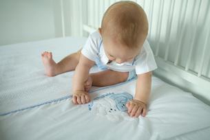 Baby looking at bunnies on blanketの写真素材 [FYI04319012]