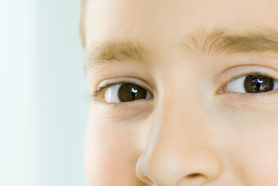 Extreme close-up of boy's eyes and noseの写真素材 [FYI04319431]