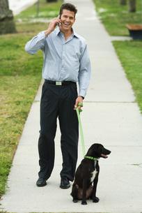 Man walking dog on sidewalkの写真素材 [FYI04319515]