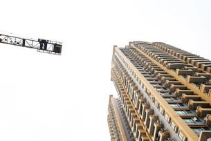 high rise and craneの写真素材 [FYI04319581]