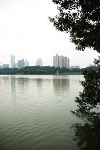 view of skyscrapers in distanceの写真素材 [FYI04319602]