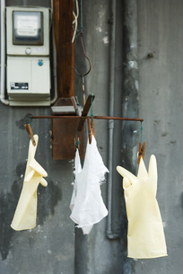 Plastic gloves and rag hanging to dryの写真素材 [FYI04319664]