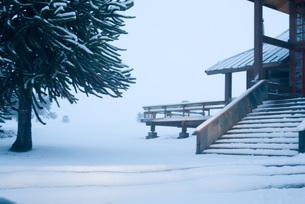 Snow-covered sceneの写真素材 [FYI04319672]