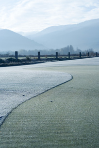 Frost-covered golf greenの写真素材 [FYI04319676]