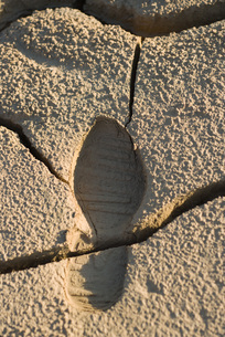 Cracked dry soil with shoeprintの写真素材 [FYI04319724]
