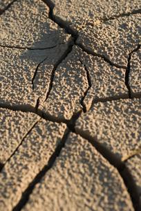 Cracked dry soil, full frameの写真素材 [FYI04319725]