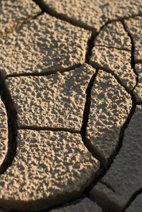 Cracked dry soil, full frameの写真素材 [FYI04319726]