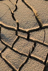 Cracked dry soil, full frameの写真素材 [FYI04319727]