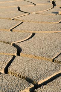 Cracked dry soil, full frameの写真素材 [FYI04319728]