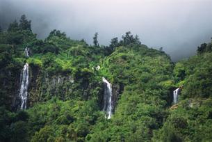 Reunion, waterfallsの写真素材 [FYI04319783]