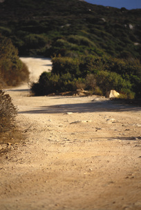 Dirt pathの写真素材 [FYI04319804]