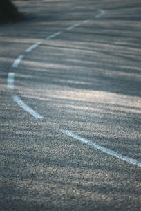 Dividing line on asphaltの写真素材 [FYI04319805]
