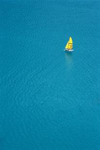 Trimaran sailing in blue seaの写真素材 [FYI04319813]