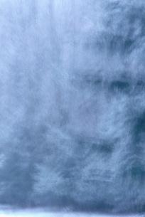 Snow-covered trees, defocusedの写真素材 [FYI04319858]