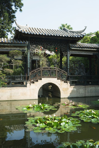 Chinese temple, lily pond and pagodaの写真素材 [FYI04319955]