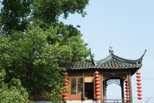Chinese pagodaの写真素材 [FYI04319971]