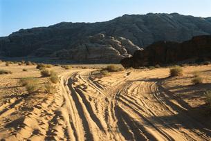 Jordan, dirt path toward rock formationの写真素材 [FYI04319982]